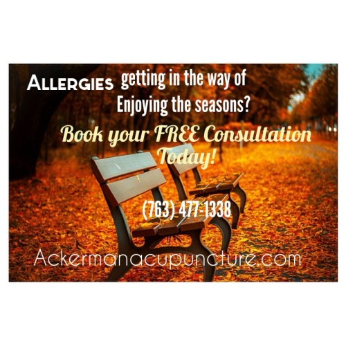 Acupuncture for Allergies and Asthma (Blaine Acupuncture & Pain Therapy)