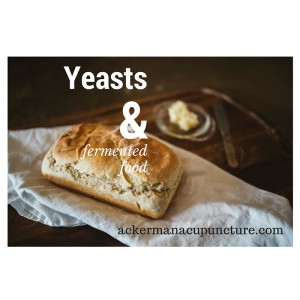 Blog Probioitc Yeast Bread
