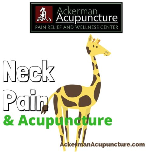 Neck Pain and Acupuncture Treatment (near Andover, MN)