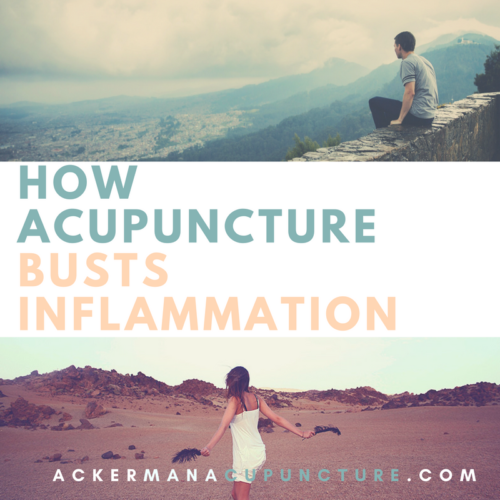 How Acupuncture Helps Decrease Inflammation in the Body (in Blaine, MN)