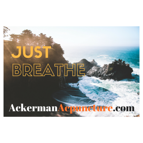Just Breathe! Stress-Busting Deep Breathing Exercise (near Andover, MN)